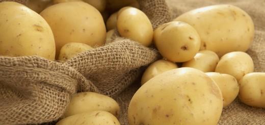 potato tips