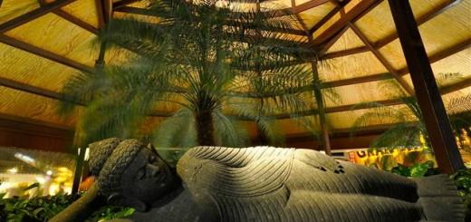 thai botanico